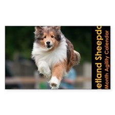 Shetland Sheepdog Agility Cale Decal