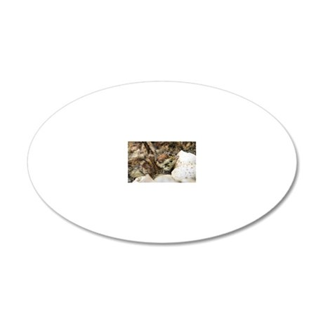 Black grouse chick 20x12 Oval Wall Decal