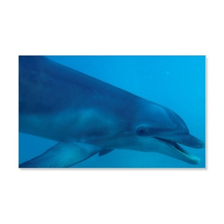 Bottlenose dolphin 20x12 Wall Decal