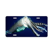 Broadclub cuttlefish Aluminum License Plate