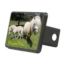 Mini Pony Hitch Cover