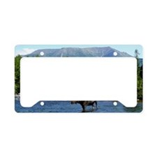 11x17_print 3 License Plate Holder
