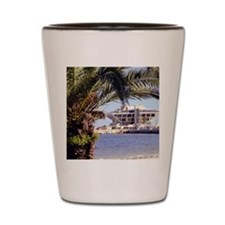 St. Pete Pier Shot Glass