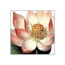 """Botanical Lotus Square Sticker 3"""" x 3"""""""