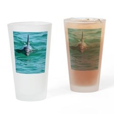 Bottlenose Dolphin Drinking Glass