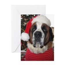 St. Bernard Santa Greeting Card