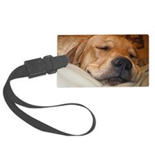 You Snooze, You Lose Luggage Tag