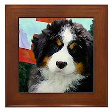 Swiss Berner Puppy Framed Tile