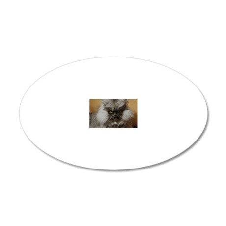 Colonel Meow scowl face 20x12 Oval Wall Decal