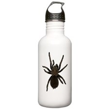 Aphanopelma chalcodes Water Bottle