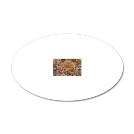 Dust mite 20x12 Oval Wall Decal