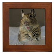 DEGU Happy_round ornament Framed Tile