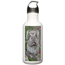 Squirrel with paws ful Water Bottle