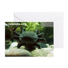 Axolotl Greeting Card