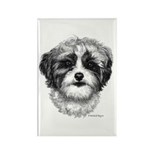 Shih-Poo Rectangle Magnet