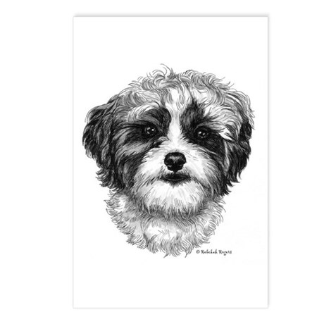 Shih-Poo Postcards (Package of 8)