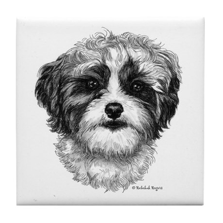 Shih-Poo Tile Coaster