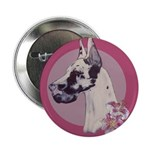 A lovely Harlequin Great Dane Button