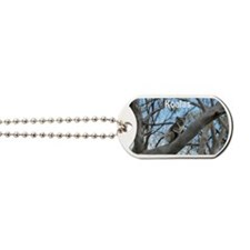 Koala Cover Dog Tags