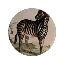 "African Zebra 3.5"" Button"