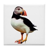 Puffin in Mules Tile Coaster