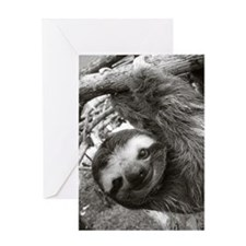 frame print Greeting Card