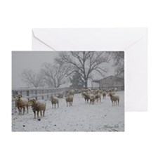 Wintery Snow Sheep Greeting Card
