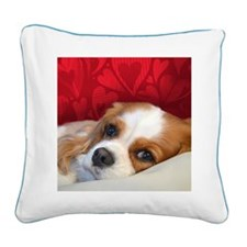 Blenheim Cavalier King Charle Square Canvas Pillow