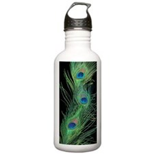 3X5 Rug Black and Gree Water Bottle