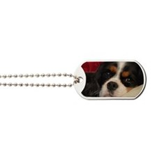 corbin_pillow Dog Tags