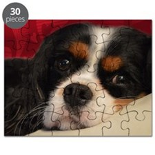 corbin_pillow Puzzle