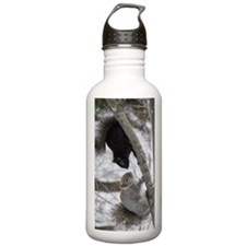 BS2.53x5.03 Water Bottle