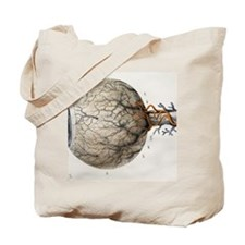 Eye anatomy, 1844 artwork Tote Bag