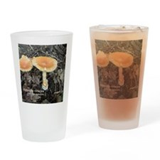 Orange Grisette Drinking Glass