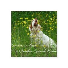 "Clumber Spaniel Wall Calend Square Sticker 3"" x 3"""