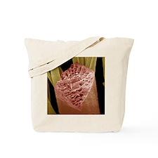 z9040049 Tote Bag
