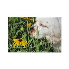 Clumber Spaniel Wall Calendar Rectangle Magnet