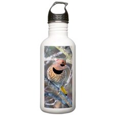 CFY@2.41x4.42SF Water Bottle