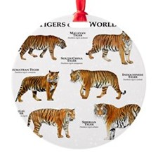 Tigers of the World Ornament