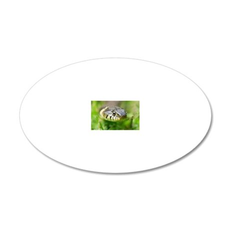 Grass snake 20x12 Oval Wall Decal