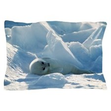 Harp seal pup Pillow Case