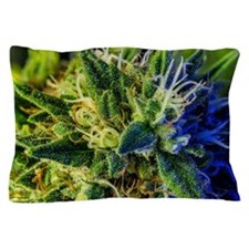 glistening trichomes Pillow Case