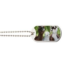 Three different alpacas Dog Tags