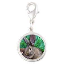 Fezzik in the Woods-1 Silver Round Charm