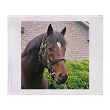 FUSAICHI PEGASUS Throw Blanket