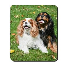 Happy Cavalier King Charles Spaniels Sma Mousepad
