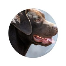 "Labrador Retriever Dog 3.5"" Button"