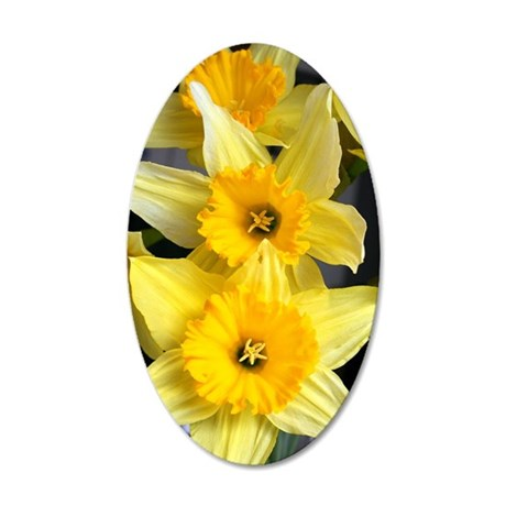 Daffs in a line 35x21 Oval Wall Decal