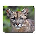 Puma Mousepad