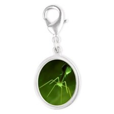 Bacteriophage, artwork Silver Oval Charm